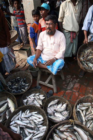 Fish on fish market in Kumrokhali, West Bengal, India on January 12, 2009. ASIA Basket Fish Fishmonger Food Hindu India Kumrokhali Market Market Stall Men People Person Prawns Row Sale Seafood Selling Shopping Stall Street Vendor West Bengal