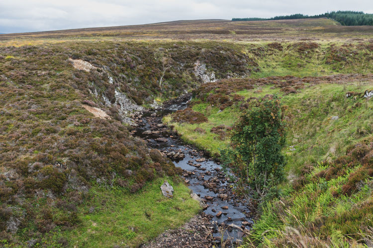 Water Scotland