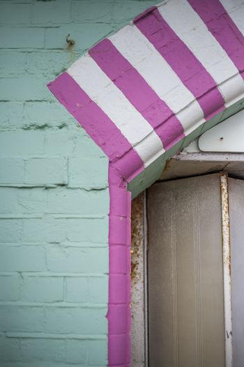 Close-up of pink umbrella