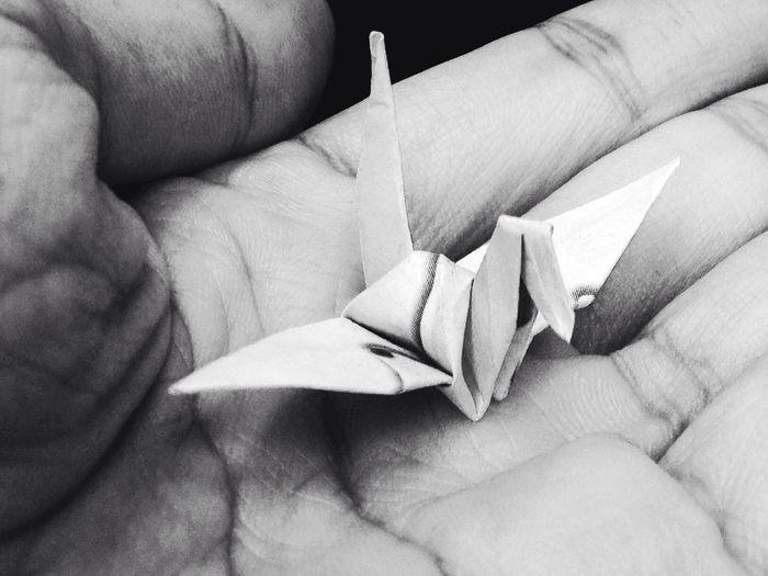 Papercraft Paperbirds Bird Carft Paper Art Blackandwhite Blackandwhite Photography Black And White