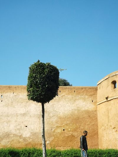 Architecture Bleu Bleu Sky Ciel Clair Clear Sky Copy Space Day Grass History Maroc Men Nature One Person Outdoors People Real People Sans Nuage Tree