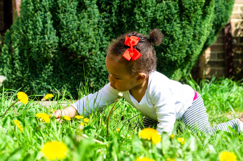 Crawling toddler playing on grass with flowers