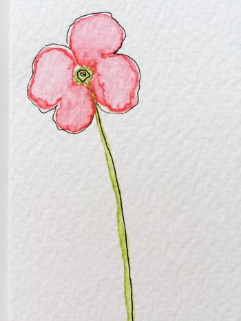 Watercolor drawing of poppy flower Watercolor Watercolour Drawing Pink Poppy Flower Flower Drawing