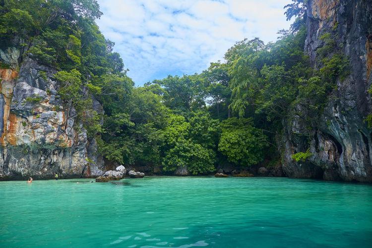 Exotic paradise