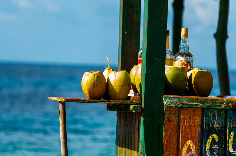 Coconuts at concession stand by sea against sky