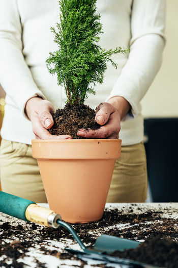 Growth One Person Human Hand Gardening Hand Plant Potted Plant Midsection Holding Human Body Part Nature Day Focus On Foreground Women Real People Planting Leaf Close-up Outdoors Flower Pot Care Home Interior Copy Space Flowerpot People Young Adult Lifestyle Seeds Bio Eco Earth