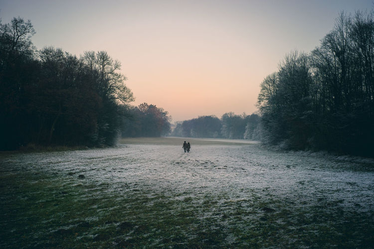 Furry People Beauty In Nature Day Fog Fur Coat Golf Golf Course Golfer Grass Minga Oida Nature Outdoors People Silhouette Sky Sunset Tranquility Tree Adapted To The City Shades Of Winter