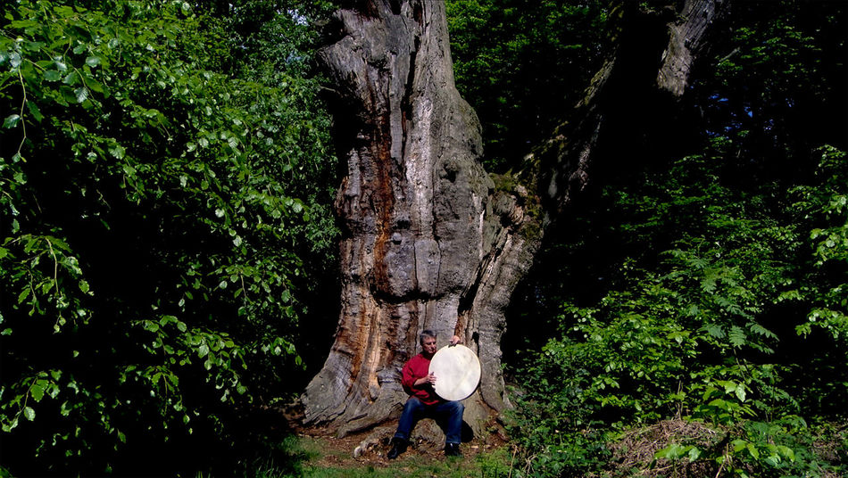 """Stills from the Video Footage shot in Urwald Sababurg (Jungle near Saba Castle, the """"Castle of 'Sleeping Beauty'"""") Adult Casual Clothing Day Drum Forest Full Length Growth Leisure Activity Lifestyles Man Men Musician Nature Oak Tree Old Tree Outdoors People Playing Drums Playing Music Outside Real People Tree Tree Trunk Video Still"""