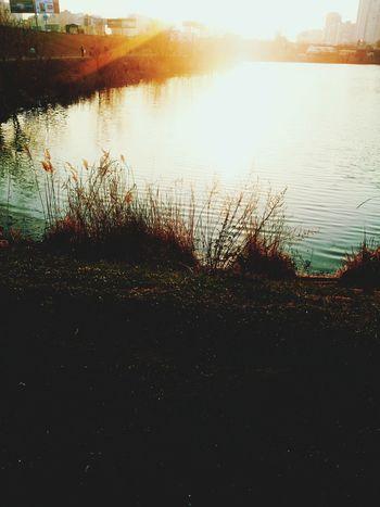 Lake Park Evening Spring