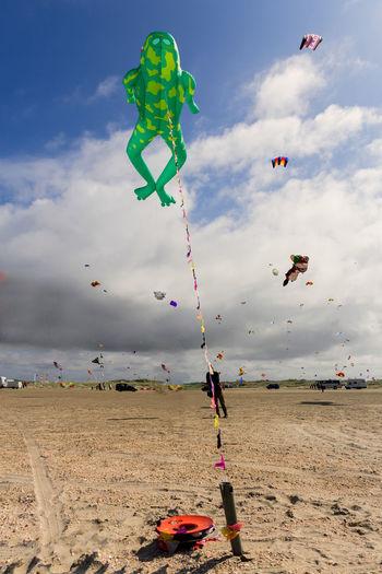 Kits flying over beach against sky