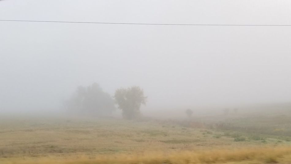Foggy October Morning No People Fog Nature Landscape Outdoors Sky Scenics Grass Tree Beauty In Nature