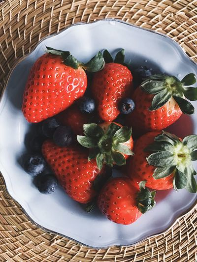 Directly above shot of fruits in bowl