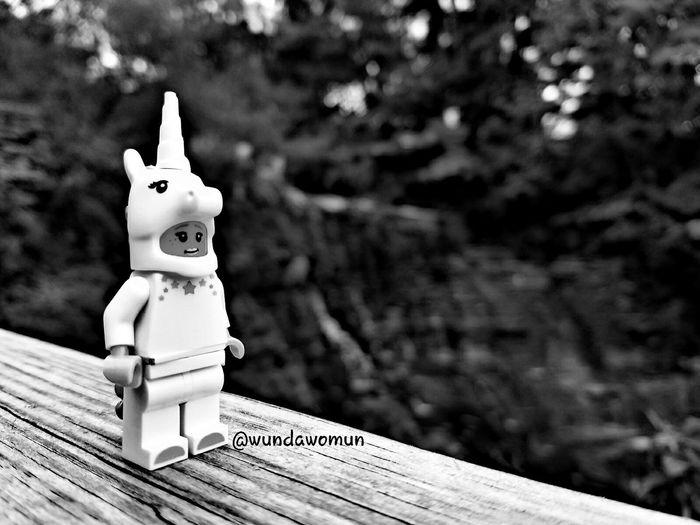 October 4-White Fmsphotoaday LEGO Minifigure Unıcorn