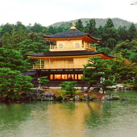 Golden Pavilion in Kyoto Kinkakuji Kinkakuji Temple Golden Temple Pavilion Spirituality Kyoto Japan Religion Tree Water Gold Place Of Worship Architecture Lake Spirituality Green Color Nature No People Scenics Outdoors Sky Beauty In Nature Day Cultures The Architect - 2018 EyeEm Awards