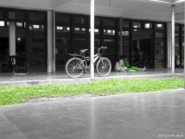 Green And Black EyeEm Nature Lover Still Waiting Suuny Day