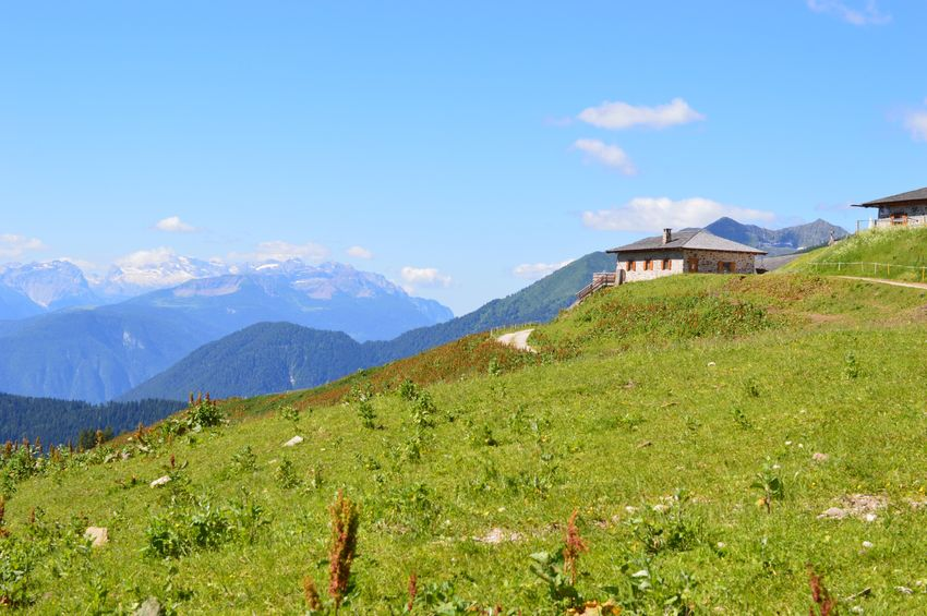 Italien Italy Italia Alto Adige South Tyrol Südtirol Mountain Sky Plant Beauty In Nature Scenics - Nature Mountain Range Tranquil Scene Growth Nature Landscape Green Color Tranquility Land Environment Day Built Structure Tree Cloud - Sky Non-urban Scene Architecture