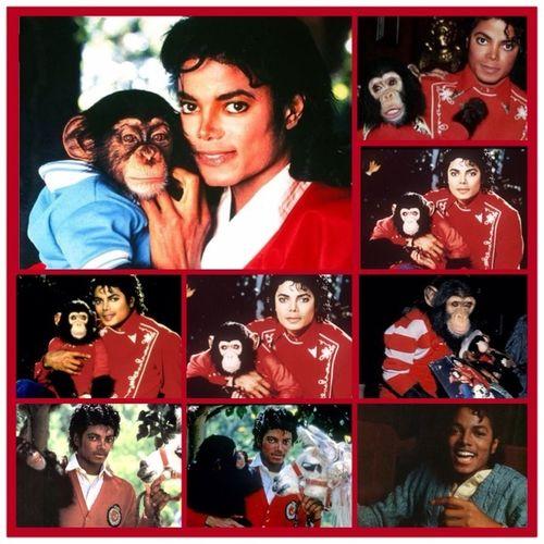 I Love Michael Jackson❤