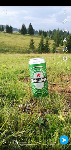 #beer Nature Heineken Tree Communication Human Representation Sky Green Color First Eyeem Photo