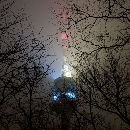Beautifulaustria Donauturm Nightphotography Architecture Bare Tree Branch Building Exterior Donauturm Foggy Low Angle View Nature Night No People Outdoors Sky Sony A6000 Tree The Great Outdoors - 2018 EyeEm Awards