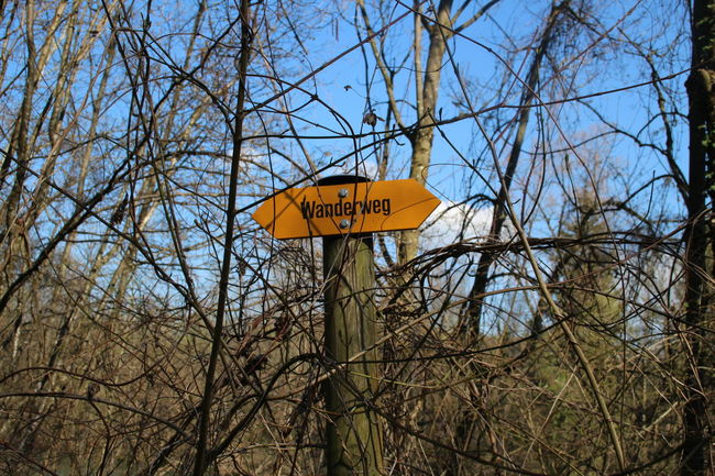 Communication German Hike Hiking Hiking Trail Laufen Nature No People Schild Sign Sky Text Trail Tree Wandern Wanderweg Yellow