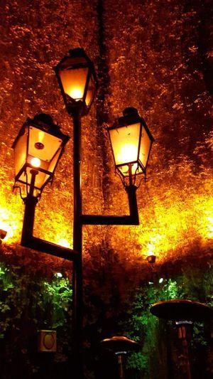des lampes magnifiques Lampes Superbe Vue Corsica Corse Lumière Du Soir Lumière Lighting Equipment Illuminated No People Lantern Indoors  Night Nature