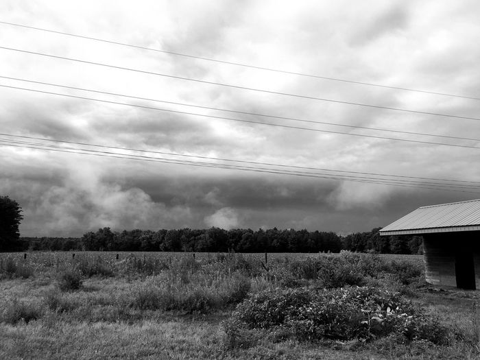 Sky Cloud - Sky Cable Field Power Line  Landscape Storm Storm Clouds Black And White Field Pine Trees Shed