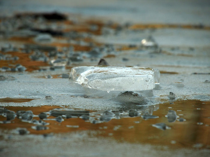 Close-up of ice crystals on sea shore