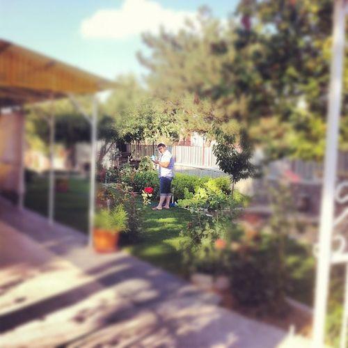 Kardeşim Ayhan bahçemizi sularken...
