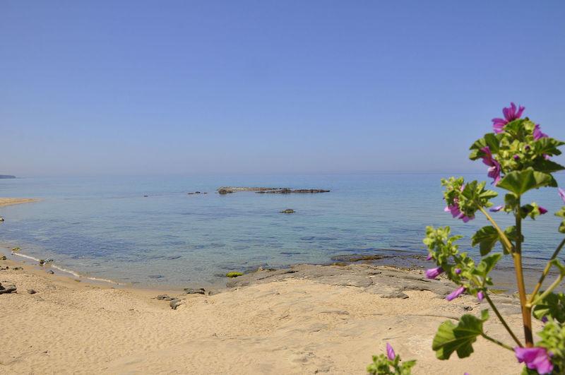 Ampurias beach