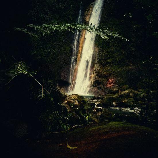 Costa Rica Water Long Exposure Nature Waterfall Beauty In Nature