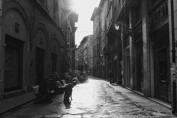 🇮🇹 Pisa (Feb.