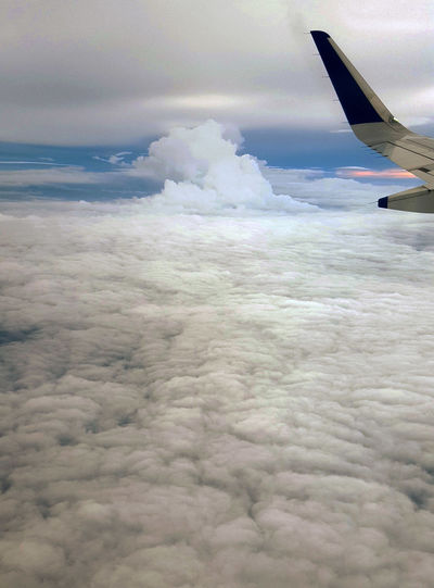 No People Air Vehicle Airplane Cloud - Sky Flying Outdoors Nature Day Sky Commercial Airplane Wing Tip Mid-air Abovetheclouds  Cloudmountain