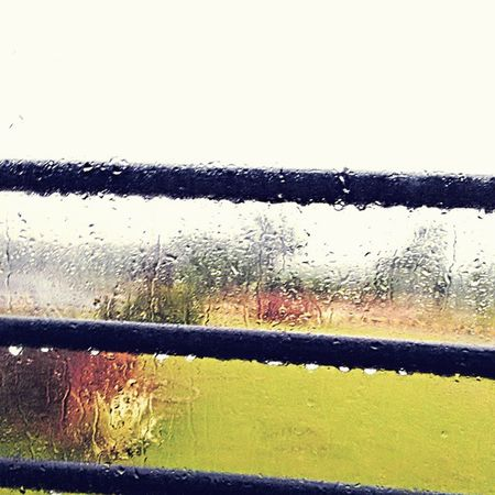 Yesterday was a rainy day. Couldn't resist myself to take this picture of ma college bus window pane