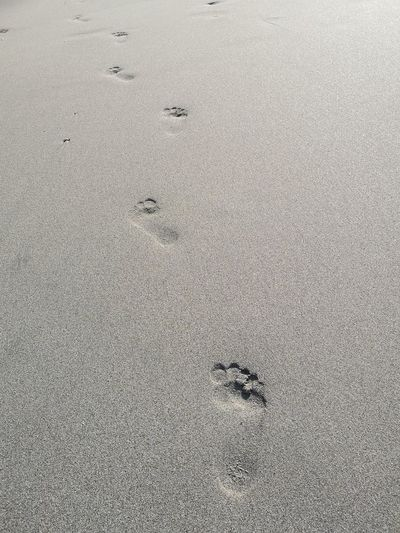 Footprint on