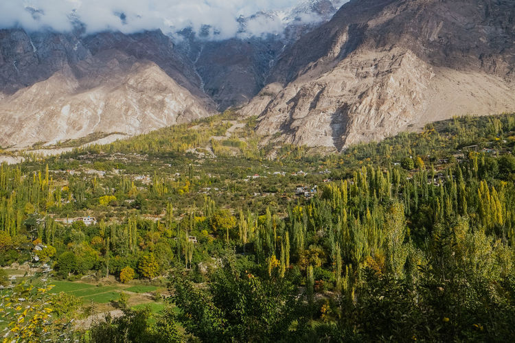 Nature landscape view in Hunza valley. Beautiful scenery of green forest with clouds and snow capped mountains in Karakoram range in the background. Gilgit Baltistan, Pakistan. Pakistan Hunza Mountains Mountain Range Green Gilgit Baltistan Forest Valley Karimabad Mountain Peak Karakoram Cloud Covered Mountains Fog Snow Capped Mountains Summer Autumn Nature Photography Lush Greenery Evergreen Village Slow Travel Eco Tourism Mountainous Mountaineering Agriculture Landscape Environment Ecology Field Peaceful Freshness Clean Air Fresh Air Serenity Tranquility Peace And Quiet Countryside Local Rural Scene Wilderness Area Healthy Living Farming Cultivated Land Destination Pure Aerial View Healthy Life ASIA Panoramic View Beautiful Scenery Scenics - Nature Beauty In Nature Nature Green Color Tranquil Scene Outdoors