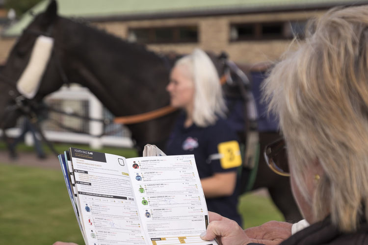 Form guide at races Better Together Form Guide Garden Horse Horse Groom Horse Race Horse Races Horse Racing