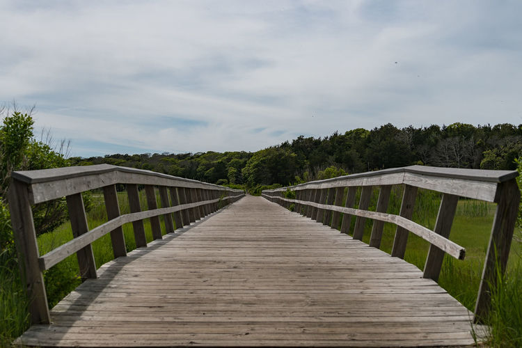 Wooden footbridge along plants and trees against sky