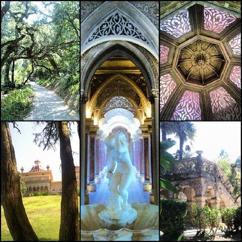 Passeio de Domingo PalacioMonserrate Sintra