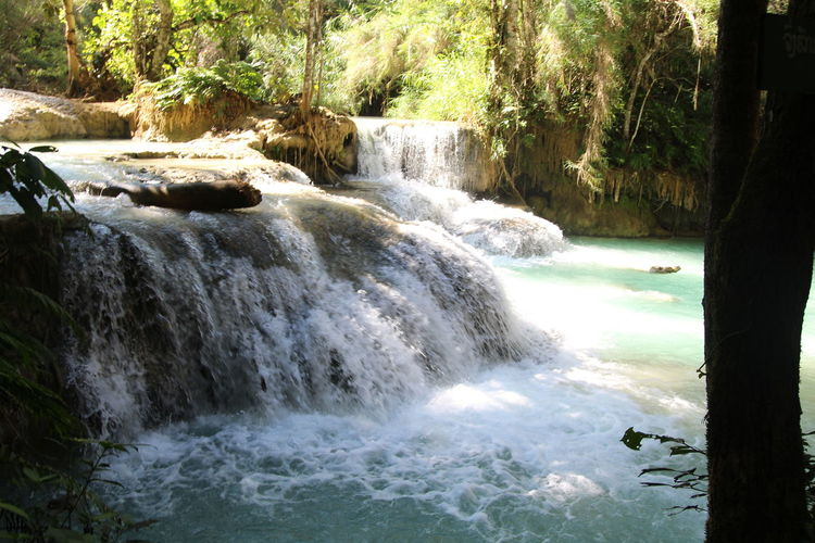 waterfalls at luang prabang Light Waterfalls And Calming Views  Beauty In Nature Day Forest Jungle Motion Nature No People Outdoors Scenics Tranquil Scene Tranquility Tree Water Waterfall Waterfall Photography Waterfalls Waterfalls At Luang Prabang Waterfalls Jungle Forest Trees Light Contrast Waterfalls💦