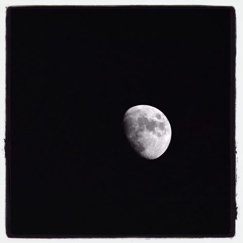 Just stopped to take a picture. Moon Black & White Soaking Up The Sun