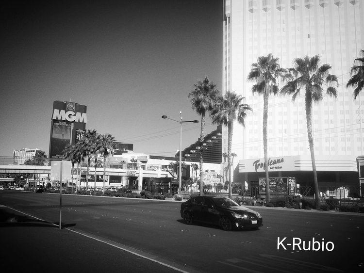 MGM, Las Vegas. VEGAS🎲 VegasStyle Vegaslife MGM Hotel Daylight Party All Night Highquality Blackandwhite Bnw_collection EyeEm Gallery Eyeemshoot Capturing Movement Travel Photography