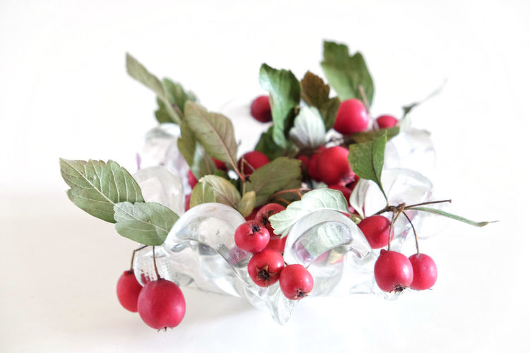 MerryChristmas Merry Christmas Bright Christmas Copy Space Green Little Apples Winter Branch Centerpiece Christmas Decoration Christmas Ornament Close-up Crystal Bowl Decorative Fruits High Key Indoors  Leaf Red Red Berries Red Fruits Still Lifr Studio Shot Welcome White White Background