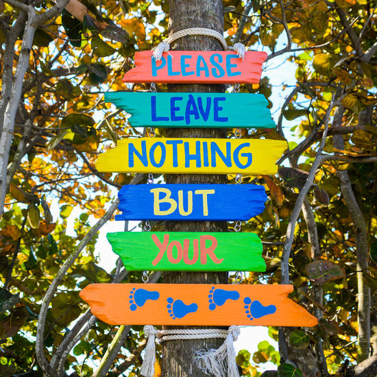 Text Tree Western Script Sign Low Angle View Nature Plant No People Day Multi Colored Outdoors Message Information Sign Beach