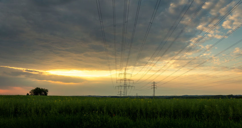 Agriculture Beauty In Nature Cable Cloud - Sky Electricity  Electricity Pylon Environment Field Fuel And Power Generation Land Landscape No People Outdoors Plant Power Line  Power Supply Scenics - Nature Sky Sun Sunset Technology Tranquil Scene Tranquility
