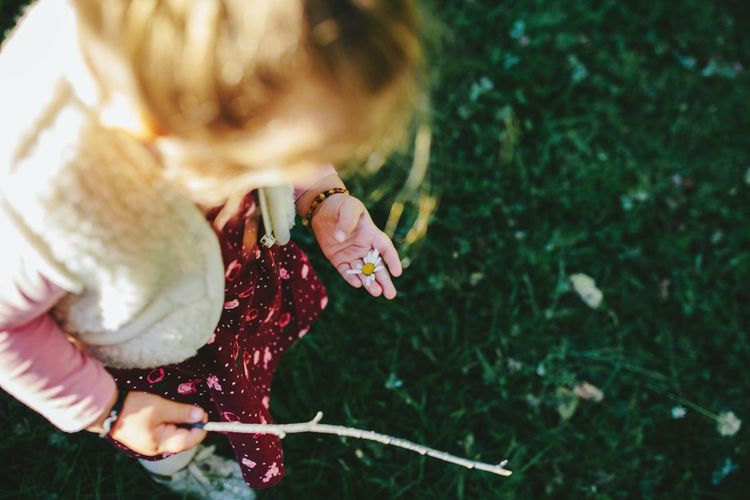 Close-up of girl holding a daisy