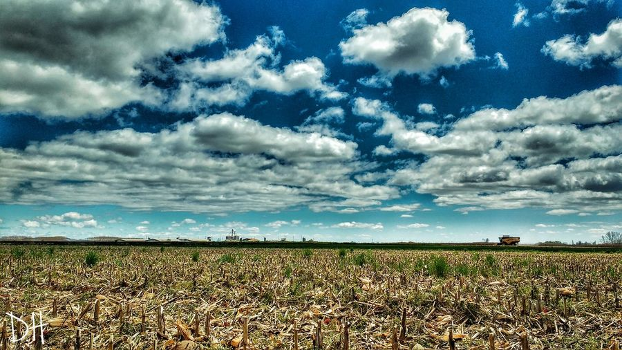 Terminando con la cosecha... Saldaña Palencia Nature First Eyeem Photo Nature Photography Photography The Great Outdoors With Adobe Señal Photolove Love ♥