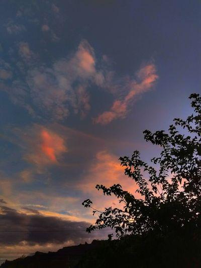"""Varied Sunset"""
