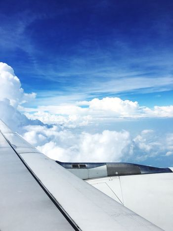 Sky's the limit Blue Airplane Sky Cloud Cloud - Sky Day Outdoors Airplane Wing Journey Transportation Travel Wings Aircraft Tranquility Wanderlust White Sky's The Limit EyeEmNewHere Flying High Break The Mold Perspectives On Nature