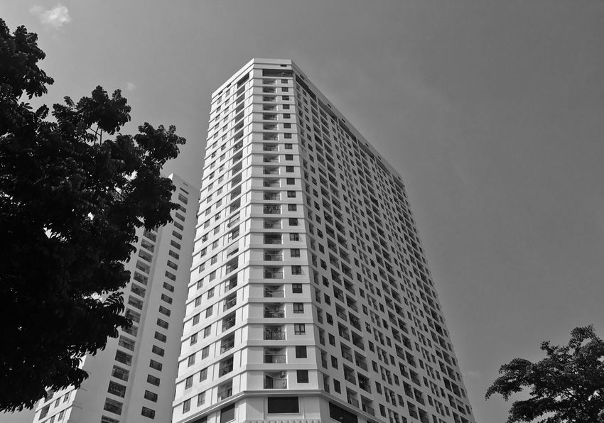 High building EyeEm Selects EyeEm Best Shots Architecture City Modern Blackandwhite Sky Black And White Tree Building Day Tower Skyscraper Plant Blackandwhite Photography Apartment No People Low Angle View Building Exterior Residential District Tall - High Built Structure Office Building Exterior Outdoors Office