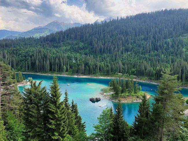 Caumasee Lakephotography Lake View Beachphotography Summer Beach Caumasee Switzerlandpictures Switzerland Plant Tree Scenics - Nature Beauty In Nature Water Tranquil Scene Mountain Tranquility Forest Cloud - Sky Sky Growth Nature Non-urban Scene Pine Tree Land Lake Coniferous Tree Green Color No People The Great Outdoors - 2018 EyeEm Awards